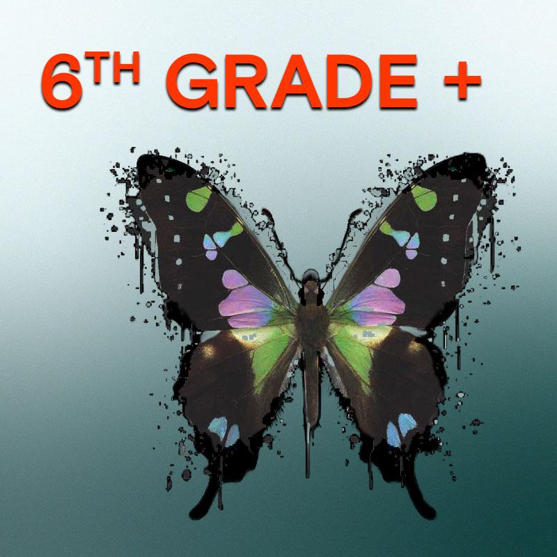 6th Grade +